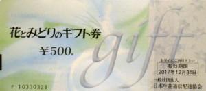 花とみどりのギフト券(有効期限あり) 500円券