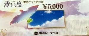 東武トラベル旅行券(青い鳥) 5000円券
