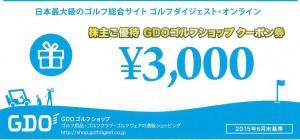 GDOゴルフショップ クーポン券 3000円券