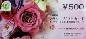 全国共通フラワーギフトカード 500円券