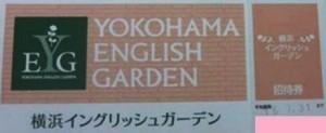 横浜イングリッシュガーデン 入場券(招待券)