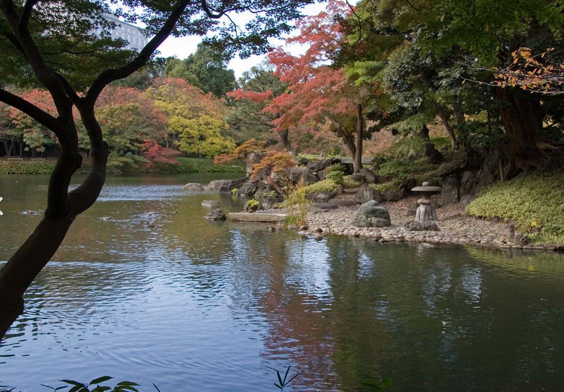小石川庭園