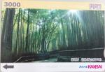 スルッとKANSAI 3000円券