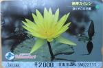 レインボーカード 2000円券