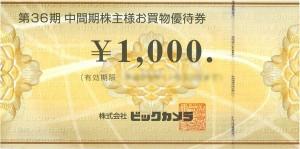 ビックカメラ株主優待券1,000円券