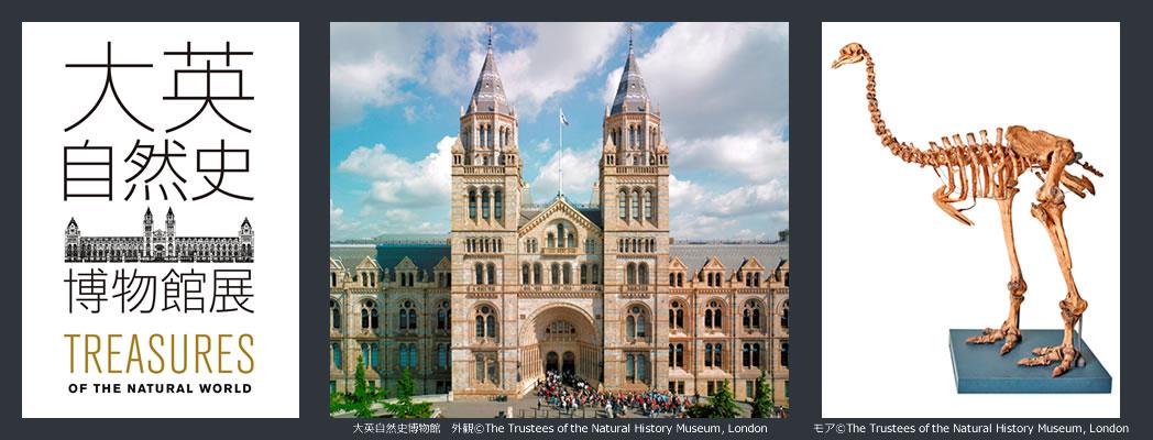 大英自然史博物館展01