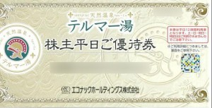 エコナックHD(テルマー湯入館券等)株主優待券
