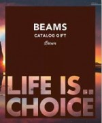 BEAMS CATALOG GIFT Brown(ブラウン)10,800円相当