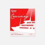 クルージングチケット RED 20,500円相当